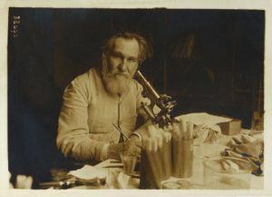 И.И. Мечников, российский ученый, врач